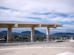 tsunami escape building